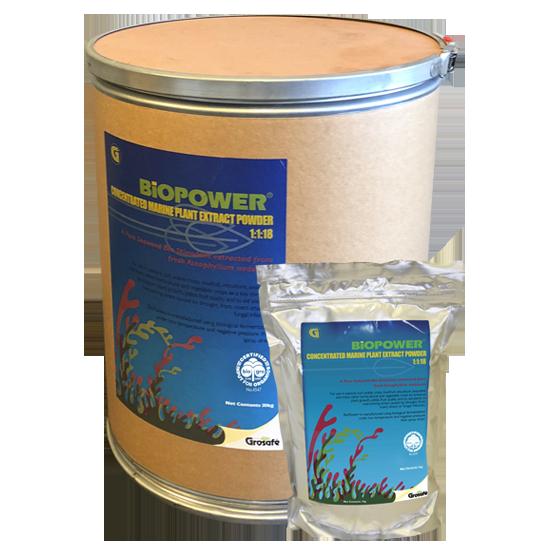BioPower Seaweed Bio Stimulant